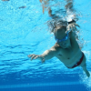 Thumbnail image for swimming :: total immersion videos + notes